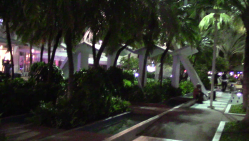 07_Miamiu1700003