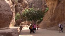 23_Aqaba1800005