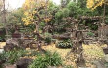 30_Chengdu00007