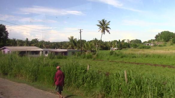 39_Fiji200004