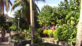40_Fiji200006