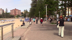 Manly05042019-04-10-12h32m05s169